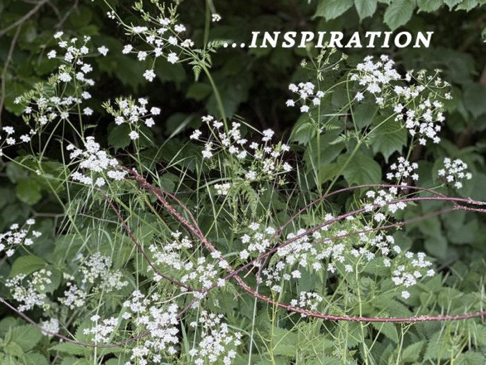 karpa_inspiration